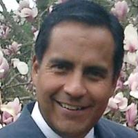 Mario Vivado