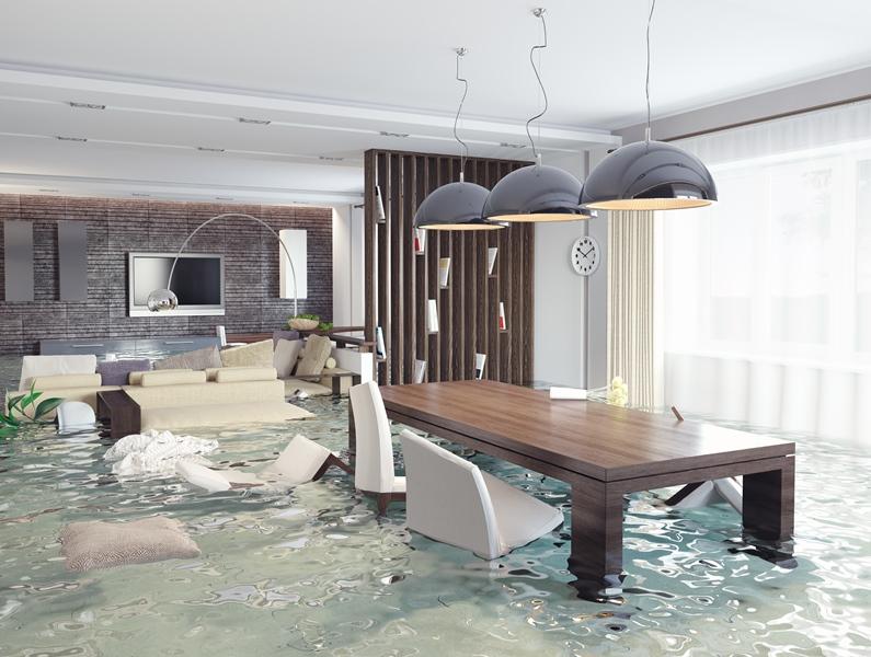 Disaster insurance